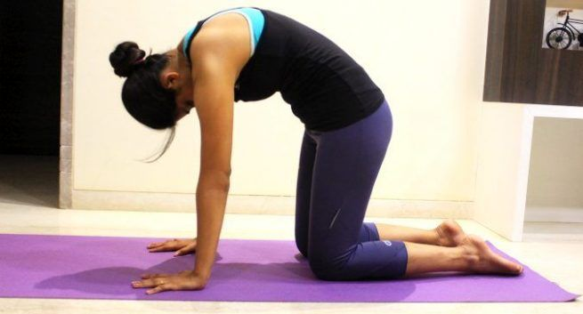 Marjariasana (power yoga poses)